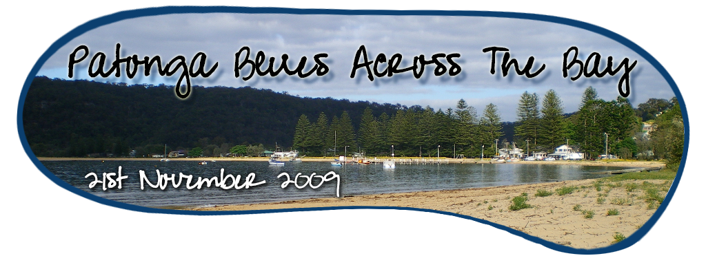 Patonga Blues Across The Bay 2013